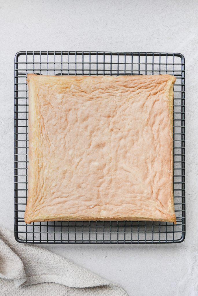 gluten free sponge